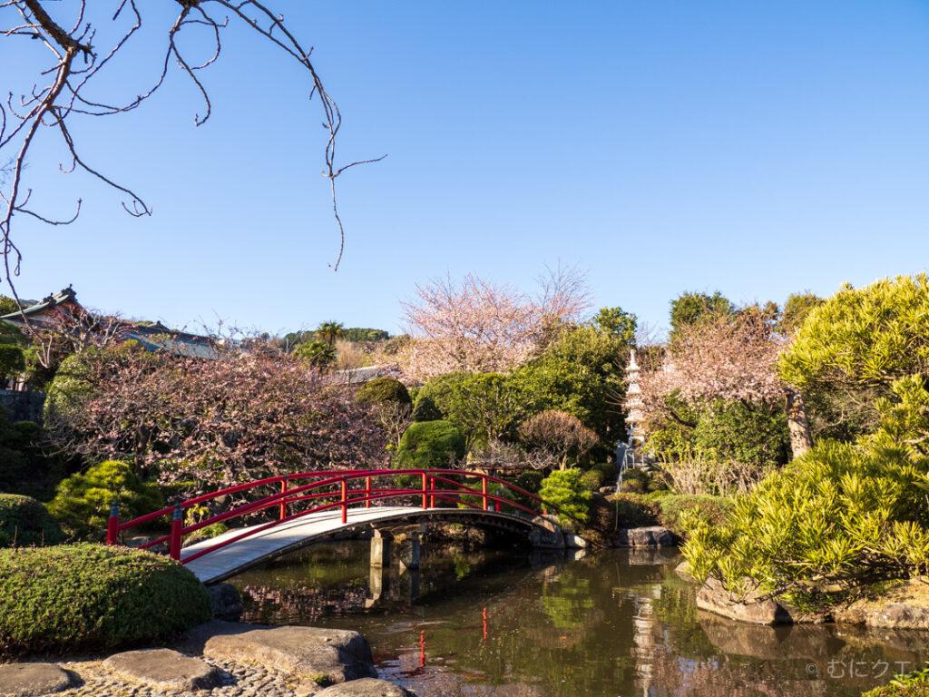 松月院の庭園